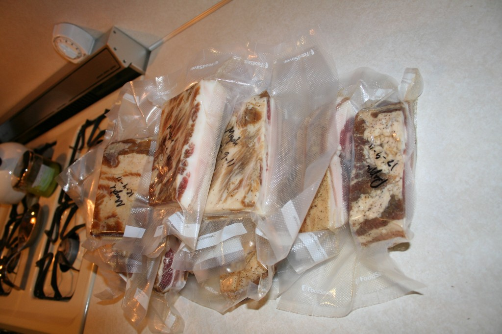 Finished bacon, vacuum sealed and ready for the freezer